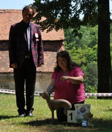 2012-06-16-kv-kchich-namest-nad-oslavou-007.jpg